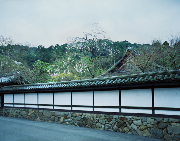 ohnaka_landscape4.jpg
