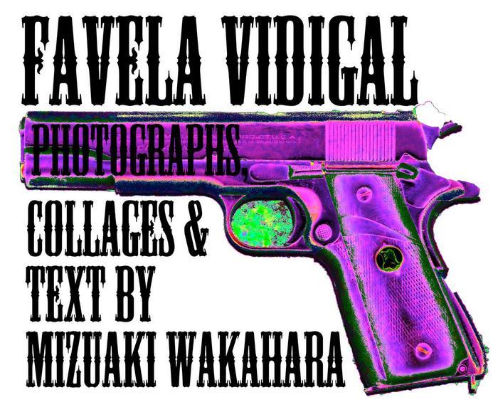 wakahara_VidigalTOP.jpg