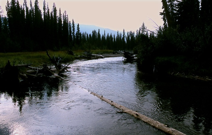 Big Salmon River Upstream.jpg